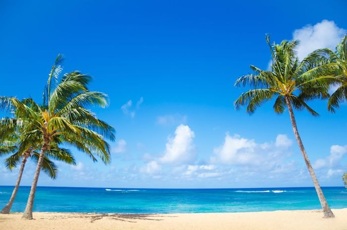 spiagge delle hawaii
