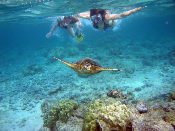 Snorkeling a Kahalu Bay, Maui