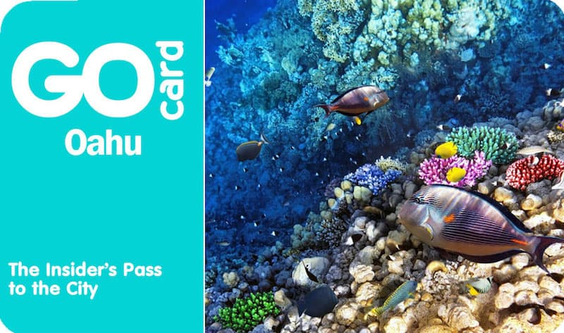 Go Oahu Card: come risparmiare col pass a Honolulu